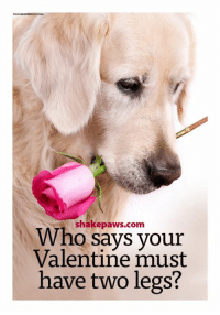 must have: Who paws.com  says your  Valentine must  have two legs?