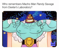Facebook, Macho Man Randy Savage, and Memes: Who remembers Macho Man Randy Savage  from Dexter's Laboratory?  MEMES Follow us for the best daily Nostalgia posts on Facebook!