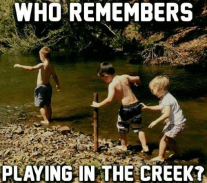 The good old rope swing and skipping rocking: WHO REMEMBERS  PLAYING IN THE CREEK? The good old rope swing and skipping rocking