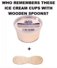 Memes, 🤖, and Cream: WHO REMEMBERS THESE  ICE CREAM CUPS WITH  WOODEN SPOONS? Who remembers these???