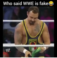 Fake, Memes, and World Wrestling Entertainment: Who said WWE is fake  SANTIND This is as real as it gets people 🐍😂