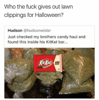 Riiight... lawn clippings 🙄😂☠️ @worldstar WSHH: Who the fuck gives out lawn  clippings for Halloween?  Hudson @hudsonwisler  Just checked my brothers candy haul and  found this inside his KitKat bar. Riiight... lawn clippings 🙄😂☠️ @worldstar WSHH