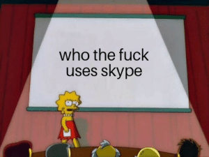 Fuck, Skype, and Who: who the fuck  uses skype just curious