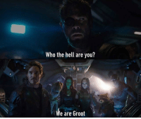 There's one other name you might know me by... Follow @9gag - - - 9gag INFINITYWAR marvel avengers iamgroot: Who the hell are you?  We are Groot There's one other name you might know me by... Follow @9gag - - - 9gag INFINITYWAR marvel avengers iamgroot