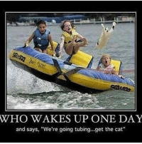 """Dad, Funny, and Memes: WHO WAKES UP ONE DAY  and says, """"We're going tubing...get the cat"""" (Credit to my dad for sending this to me) clean cleanfunny cleanhilarious cleanposts cleanpictures cleanaccount funny funnyaccount funnypictures funnyposts funnyclean funnyhilarious"""