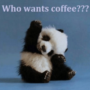 Memes, Coffee, and Images: Who wants coffee??? 60 Wednesday Coffee Memes, Images & Pics to Get Through the Week