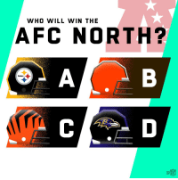 Who will win the AFC North? 🤔 https://t.co/2dFZ4Wgz6A: WHO WILL WIN THE  AFC NORTH?  Steelers Who will win the AFC North? 🤔 https://t.co/2dFZ4Wgz6A