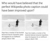 Wikipedia, Penguin, and Scottish: Who would have believed that the  perfect Wikipedia photo caption could  have been improved upon?  Piper Kerr, a member of the Scottish  National Antarctic Expedition, plays  the bagpipes for an indifferent  penguin, March 1904  Piper Kerr (right), a member of the  Scottish National Antarctic Expedition,  plays the bagpipes for an indifferent  penguin, March 1904 The only Wikipedia edit that could have been made.