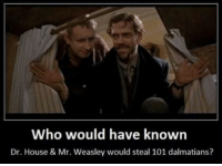 Memes, 🤖, and 101 Dalmatians: Who would have known  Dr. House & Mr. Weasley would steal 101 dalmatians? -Iceprincess