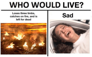 Fire, Live, and Sad: WHO WOULD LIVE?  Loses three limbs,  catches on fire, and is  Sad  left for dead When she says it's hard being a woman