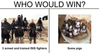 """<p>Scalping who would win memes while they&rsquo;re making an unexpected resurgence, ACT QUICK! via /r/MemeEconomy <a href=""""http://ift.tt/2qbtoZu"""">http://ift.tt/2qbtoZu</a></p>: WHO WOULD WIN?  3 armed and trained ISIS fighters  Some pigs <p>Scalping who would win memes while they&rsquo;re making an unexpected resurgence, ACT QUICK! via /r/MemeEconomy <a href=""""http://ift.tt/2qbtoZu"""">http://ift.tt/2qbtoZu</a></p>"""