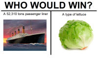 "Memes, Answer, and Passenger: WHO WOULD WIN?  A 52,310 tons passenger liner  A type of lettuce <p>the answer will knock your socks off via /r/memes <a href=""https://ift.tt/2Kygf7y"">https://ift.tt/2Kygf7y</a></p>"