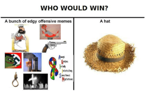 Memes, Edgy, and Who: WHO WOULD WIN?  A bunch of edgy offensive memes  A hat  rrue  ot  ntcresting  omctimes  Msteroae hat