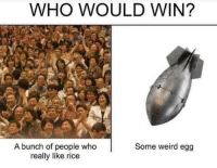 Who Would Win: WHO WOULD WIN?  A bunch of people who  really like rice  Some weird egg