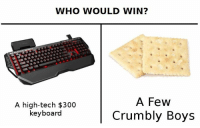 True horror: WHO WOULD WIN?  A high-tech $300  keyboard  A Few  Crumbly Boys True horror