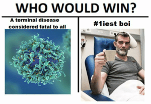 Top 10 memes that make you laugh whole day http://bit.ly/2y29tM8: WHO WOULD WIN?  A terminal disease  considered fatal to all  #1 iest boi Top 10 memes that make you laugh whole day http://bit.ly/2y29tM8