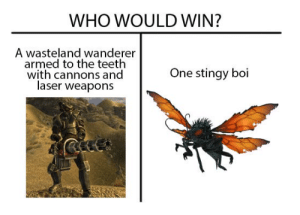 doesnt matter how strong you are, you arent stronger than poison damage: WHO WOULD WIN?  A wasteland wanderer  armed to the teeth  with cannons and  laser weapons  One stingy boi doesnt matter how strong you are, you arent stronger than poison damage