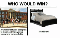 Memes, Train, and Never: WHO WOULD WIN?  A whole institution designed  to teach and train young  humans in various fields  Cuddly boi Tag a mate who never makes the 9AM lecture.