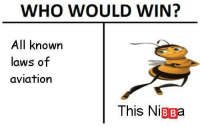 <p>old memes are the best memes</p>: WHO WOULD WIN?  All knowrn  laws of  aviation  This NiBBa <p>old memes are the best memes</p>