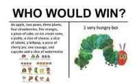 <p>Very pure</p>: WHO WOULD WIN?  An apple, two pears, three plums  four strawberries, five oranges  a piece of cake, an ice cream cone,  a pickle, a slice of cheese, a slice  of salami, a lollipop, a piece of  cherry pie, one sausage, one  cupcake and a slice of watermelon  1 very hungry boi <p>Very pure</p>