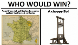 Revolution, Boi, and Who: WHO WOULD WIN?  An entire social, political and economic  system that lasted centuries  A choppy Boi  F RANCE  REVOLUTION