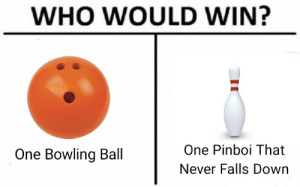 Dank, Memes, and Reddit: WHO WOULD WIN?  Ctispy Miner  One Pinboi That  One Bowling Ball  Never Falls Down Who would win? by CrispyMiner FOLLOW 4 MORE MEMES.