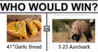 Aardvark: WHO WOULD WIN?  Facebook.com/Garlicbreadmeme  VS  5.23 Aardvark  41 Garlic Bread