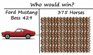 Horses, Ford, and Ford Mustang: Who would win?  Ford Mustang  375 Horses  Boss 429 Mustang for sure