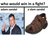 who would win in a fight?  a dam sandal  adam sandal  ovie