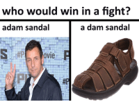 who would win in a fight?  a dam sandal  adam sandal  OVIe a damn croc