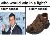 who would win in a fight?  adam sandal  a dam sandal  ovie  邾