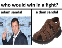 who would win in a fight?  adam sandal  a dam sandal  ovie R