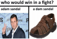 who would win in a fight?  adam sandal  a dam sandal  OVIe me_irl