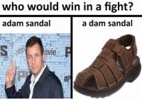 who would win in a fight?  adam sandal  a dam sandal  OVIe