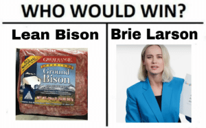 Google, Lean, and Rocky: WHO WOULD WIN?  Lean Bison |Brie Larson  NATURAL  ΣΕ  GREAT RANGE  ALL  BRAND  PREM IUM  90% LE FAT  Ground  Bison  KEEP REFRIGERATED  Raised Without Antibiotics, No Added Hormones  Google  Minimälly Processed. No Artificial Ingredients  Federal regulations prohibit the use of hormones in bison  NET WT. 200z (1.25LB) 567g  EST, 20247  Distributed by: Rocky Mountain Natural Meats LLC Henderson, CO 80640 USA  WO Is this a personal attack?