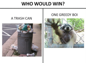 top 10 anime battles by CIean FOLLOW 4 MORE MEMES.: WHO WOULD WIN?  ONE GREEDY BOI  A TRASH CAN top 10 anime battles by CIean FOLLOW 4 MORE MEMES.