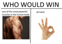 Ok Hand Sign: WHO WOULD WIN  one of the most rfu ok hand  muscles in the human body