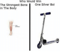 Memes, Silver, and 🤖: Who Would Win  One Silver Boi  The Strongest Bone  in The Body Ouch