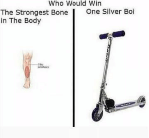 100 Of The Best Australian Memes Of 2018: Who Would Win  One Silver Boi  The Strongest Bone  in The Body 100 Of The Best Australian Memes Of 2018