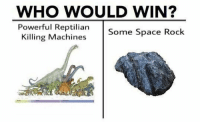 Memes, Space, and Powerful: WHO WOULD WIN?  Powerful Reptilian  Some Space Rock  Killing Machines