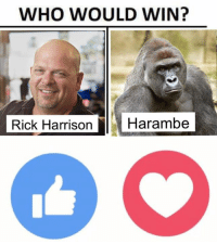 WHO'S LOYAL: WHO WOULD WIN?  Rick Harrison Carambe WHO'S LOYAL