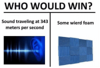 Dank Memes, Who, and Sound: WHO WOULD WIN?  Sound traveling at 343  Some wierd foam  meters per second