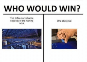 Fucking, Tumblr, and Blog: WHO WOULD WIN?  The entire surveillance  capacity of the fucking  NSA  One sticky boi memecage:  Paranoia