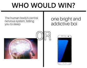 Tumblr, Blog, and Http: WHO WOULD WIN?  The human body's central  nervous system, telling  you to sleep  one bright and  addictive boi memehumor:  Me every night