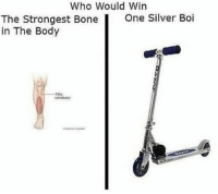 Silver, Dank Memes, and Boi: Who Would Win  The Strongest Bone  One Silver Boi  in The Body  12- 🛴or die