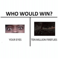 Your move.: WHO WOULD WIN?  YOUR EYES  TEN MILLION FIREFLIES Your move.