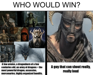 Army, Old, and Dragons: WHO WOULD WIN?  ysie duioywPacziemne  A Tew armies, a dragonborn of a leW  centuries old, an army of dragons +the  most powerlul dragon, assassinS,  mercenaries, highly organized bandits,  A guy that can shout realy,  really loud