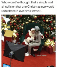Memes, 🤖, and Eve: Who would've thought that asimple mid  air collision that one Christmas eve would  unite these 2 love birds forever.  Bogus. memes Look at these love birds 😂 (@bogus.memes)