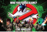 Relatable to any junglers?: WHO YOURONNA BLAME?  THE JUNGLER! Relatable to any junglers?