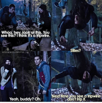 Memes, Teen Wolf, and Yeah: Whoa,hey, look this. You  see this? think its ampwire.  Stiles?  @TEEN WOLF BOYSSIig  Nexf time you see a tripwire.  Yeah, buddy? Oh + such young kiddos